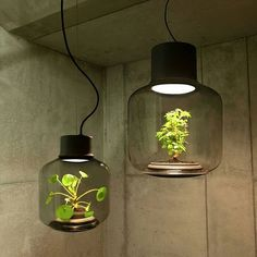 #LED Lamps with a self-sustaining system ecosystem by We Love Eames ________ © We Love Eames Tag an architecture lover !!