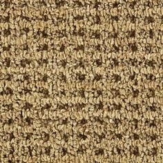Martha Stewart Living Hillwood - Color Carton 15 ft. Carpet-902HDMS079 at The Home Depot
