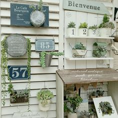 玄関/入り口/プレートDIY/玄関前/ルーバーラティス/玄関先/多肉寄せ植え…などのインテリア実例 - 2016-10-05 07:55:42   RoomClip(ルームクリップ) Beautiful Space, Beautiful Gardens, Greenhouse Shed, Private Garden, Nature Decor, Planting Succulents, Garden Art, Ladder Decor, Diy And Crafts