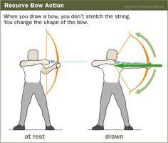 arc comment archer flèches 25 livres sur CD ultime bibliothèque sur le tir à l/'arc