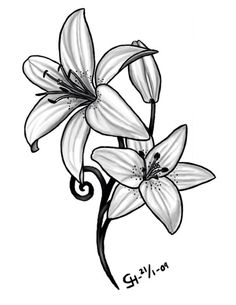 Daffodil | March Birth Flower | Tattoo Ideas - Lilly | May Birth Flower | Tattoo Ideas - b&w watercolor effect