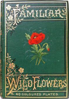 VirtualPaperdolls Vintage Book Covers, Vintage Books, Vintage Library, Antique Books, Old Books, Book Cover Art, Book Art, I Love Books, Books To Read