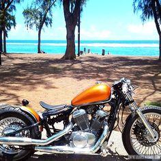 Honda Shadow Bobber, Harley Davidson, Bobber Style, Kustom, Bicycle, Bobbers, Attention, Shadows, Wheels