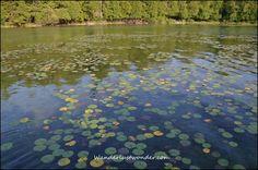 Photo Friday: Elkhart Lake, Wisconsin