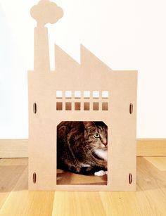 KEK Amsterdam XL Kattenpandje Warehouse   Animals (mostly cats tho ...