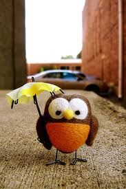 Fake owl but cute