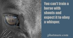 You can't train a horse with shouts and expect it to obey a whisper. www.phatmare.com
