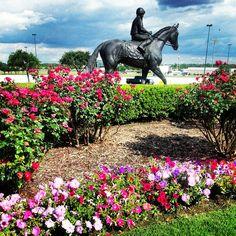 Alysheba Bronze Statue Book Bar, Grand Prairie, Thoroughbred Horse, Horse Racing, Kentucky, Moose Art, Texas, Bronze, Horses