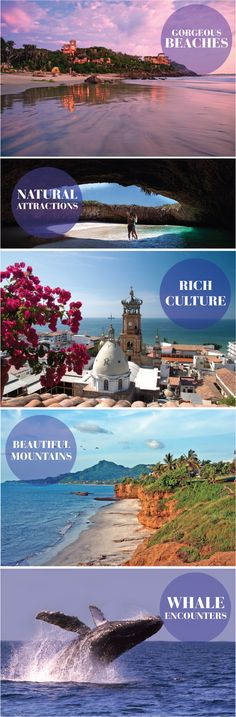 5 Reasons to have a destination #wedding or #honeymoon in Puerto Vallarta