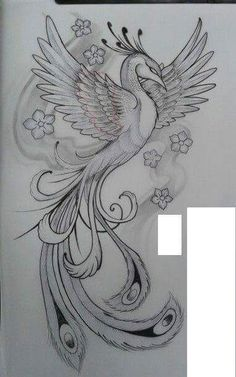 Pájaros - Phoenix Tattoo - Amazing Garden Ideas - DIY Home Accents - Hairstyle For Long - DIY Jewelry Tutorial Art Drawings Sketches Simple, Pencil Art Drawings, Bird Drawings, Dope Tattoos, Body Art Tattoos, Tatoos, Pheonix Drawing, Phoenix Artwork, Phoenix Tattoo Design