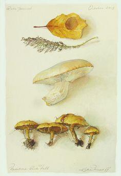 "Katie Musolff, MOISTURE RICH FALL, Watercolor on Paper, 12 1/2 X 8 1/2"""