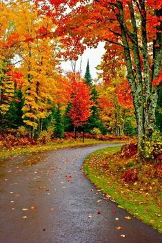 This poem is about the beautiful way of fall, the colors and the natural scenery everywhere that meet us all. Beautiful Roads, Beautiful World, Beautiful Places, Beautiful Nature Wallpaper, Beautiful Landscapes, Beautiful Nature Pictures, Autumn Scenes, Natural Scenery, Fall Pictures