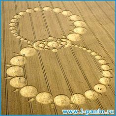 Круги на полях идентифицированы Crop circles are identified: Тайна Стоунхенджа The mystery of Stonehenge
