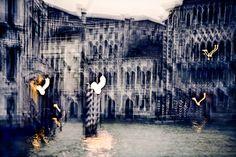 """Milano in corso 2 mostre, imperdibili, con immagini di Roberto Polillo . Alla Fondazione Stelline, fino al 13 Novembre 2016 , """"Visions of Venice"""". Si tratta del primo capitolo di """"Impr…"""