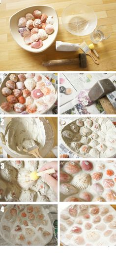 DIY Sea Shell Mosaic