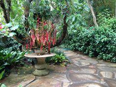 Arranjo Floral em Inhotim, Brumadinho, Minas Gerais