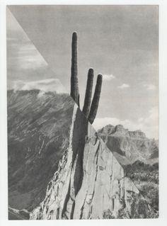 """Saatchi Online Artist: Mary Rasmussen; Paper, Assemblage / Collage """"XXX"""""""