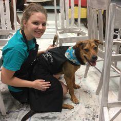 Duke also helps Daisha. #rescuedog #rescuedrelicsstudio #duketheshopdog #diy #paint  #paintedfurniture
