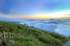 嘉義》漫步在傳說中的雲海裡 美麗的景色讓心情愉悅 - 新鮮報 - Yahoo奇摩旅遊
