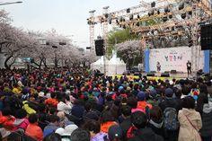 매일매일이 즐거운 봄꽃축제 (2015.4.12)