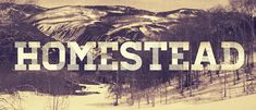 """""""Homestead"""" Slab-Serif Font - Luke Lisi / Lost Type ~ """"An evocative yet forward-thinking slab. New Free Fonts, Great Fonts, Awesome Fonts, Typography Letters, Typography Design, Midcentury Modern, Police Font, Lost Type, Hipster Fonts"""