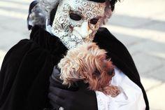 """""""Carnival Dog Photograph  -  Fine Art Print"""""""