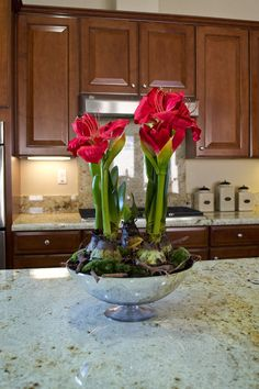 89 best artificial plants flowers images on pinterest in 2018 artificial amaryllis plant on a chrome vase mightylinksfo