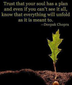 Trust that your soul has a plan and even if you can't see it all, know that evrything will unfold as it is meant to. Words Quotes, Wise Words, Me Quotes, Fun Qoutes, People Quotes, Quotable Quotes, Famous Quotes, Wisdom Quotes, Eckhart Tolle