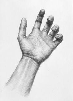 Cool Art Drawings, Amazing Drawings, Art Drawings Sketches, Human Anatomy Drawing, Anatomy Art, Life Drawing, Figure Drawing, Draw Tips, Academic Drawing