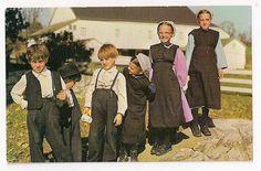 Amish Life