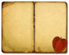 Variations on a vintage open Bible collage with a leaf and a Christian cross.