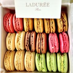 favorite macaroons in NYC