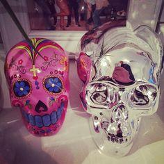 Skull budies