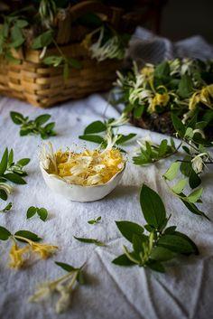 honeysuckle recipes: honeysuckle cordial, honeysuckle buttermilk biscuits with sea salt honey peach butter, honeysuckle mint vinaigrette - by Beth Kirby | {local milk}