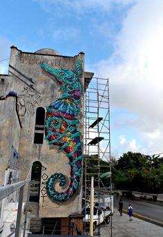 street-artist mexicain Farid Rueda