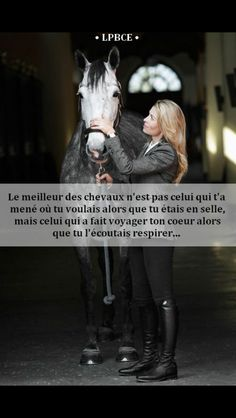 """The best horse is not the one who led you where you wanted when you were … – Art Of Equitation Equestrian Quotes, Cute Ponies, Horse Quotes, Horse Girl, Wild Horses, Horseback Riding, Horse Riding, My Passion, Mammals"