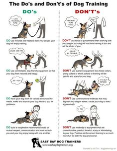 Dog Obedience Training Potty training, often called house training, is among the most essential things that new pet dog owners should teach their puppies or brand-new grown pets. Puppy Training Tips, Training Your Dog, Potty Training, Agility Training, Training Classes, Training School, Training Collar, Dog Agility, Crate Training
