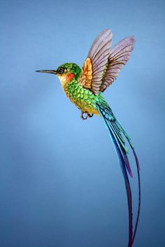 Londoner artist Zack Mclaughlin imagines realistic sculptures of birds from wood, paper and leaves of trees. He first models in 3D all his hummingbirds and then starts to sketch a beginning of structure with a rigid and flexible wire to come up with th... Read more