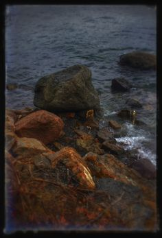 Sjøstrand