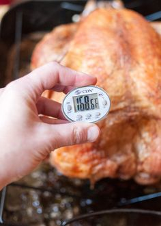 How To Cook a Frozen Turkey — Cooking Lessons from The Kitchn