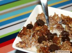 Paleo Cinnamon Pecan Crunch Cereal (modify to make low carb... use sugar free syrup and stevia instead of honey...)