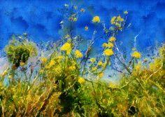 DSC06616_DAP_Monet
