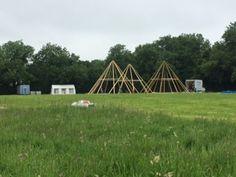 Tipis at Wild Meadow Village, Glastonbury Festival 2015