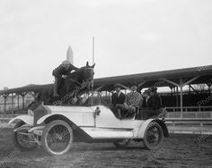 Ralph Coffin Jumping Horse Rolls Royce 1916 Vintage 8x10 Reprint Of Old Photo 2                                                                                                                                                                                 Más
