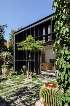 This contemporary garden pavilion is a compact addition to an Edwardian cottage in Melbourne. Baffle house by Clare Cousins Architects Garden Architecture, Residential Architecture, Modern Architecture, Design Hall, Layout Design, Contemporary Garden Design, Landscape Design, Sofa Bar, Clare Cousins