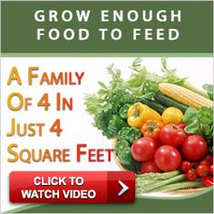 Grow Enough Food To Feed A Family Of 4 In Just 4 Square Feet