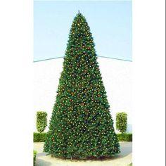 18' Giant Pre-Lit Everest Fir Commercial Christmas Tree - Multi LED Lights - Walmart.com