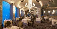 Ossiano, Dubaï - Restaurant Avis, Numéro de Téléphone & Photos - TripAdvisor Dubai Aquarium, Restaurants, Trip Advisor, Greece, Conference Room, Chandelier, Ceiling Lights, Table Decorations, Photos