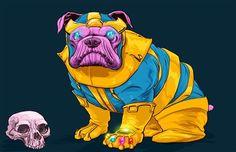 Cães Marvel, prontos para salvar o mundo! | Nerd Da Hora