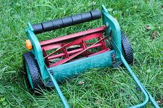 Tips to keep your lawn looking its best.
